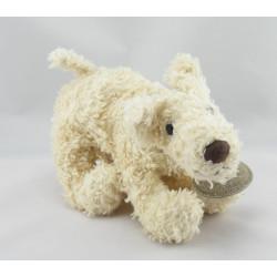 Doudou et compagnie chien couché blanc marron